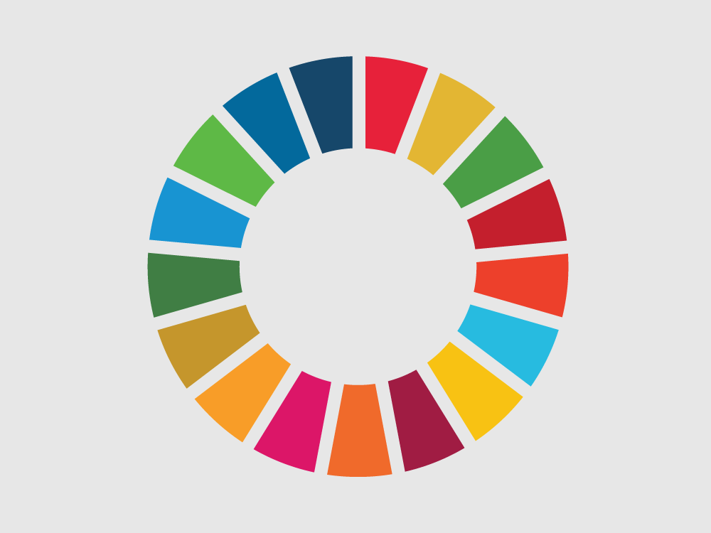 SDGs, Parliaments and Budgets